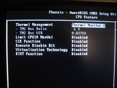 BIOS CPU Features