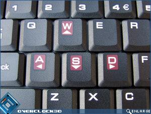 MSI GX600 WASD Keys