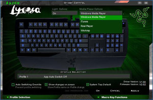 Lycosa Media Player options