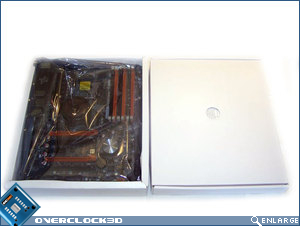 Foxconn Renaissance secondary packaging with motherboard and contents