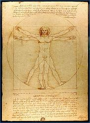 Leonardo da Vinci's perfectly proportioned man