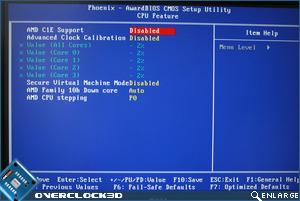 CPU feature