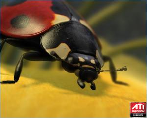 ATI's Ladybug demo