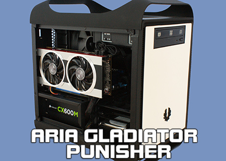 Aria Gladiator Punisher System Review