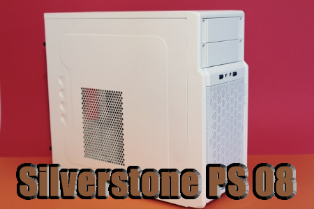 Silverstone PS 08 Case Review