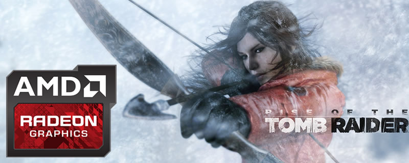 Rise of the Tomb Raider AMD Driver Retest