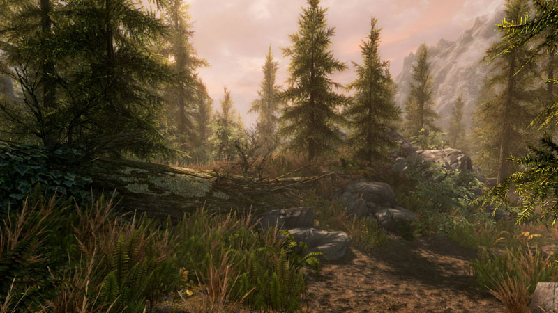 Skyrim Special Edition PC system requirements
