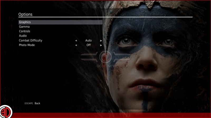 Hellblade: Senua's Sacrifice Graphical options and settings