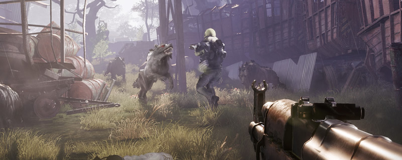 Vostok Games releases Fear The Wolves' PC system requirements