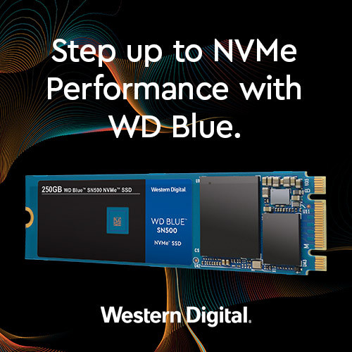 Need a Budget-Friendly NVMe SSD - The WD Blue SN500 has you covered!