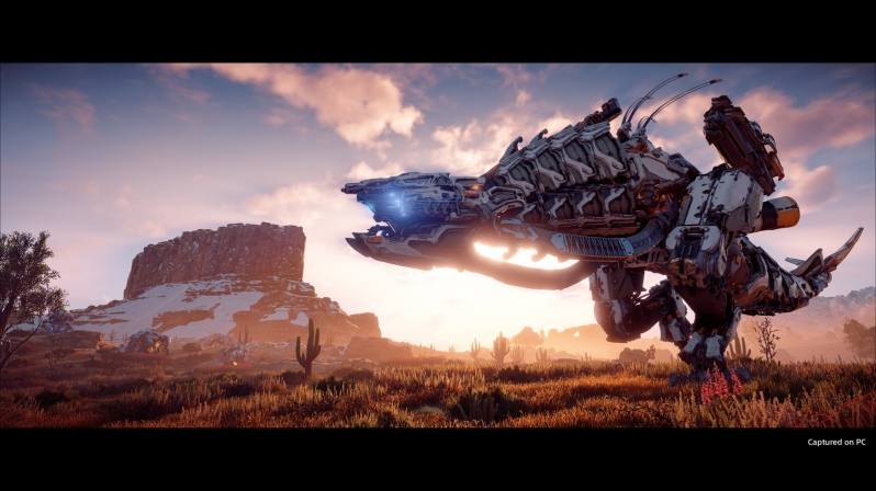 Guerrilla Games issues statement on Horizon Zero Dawn's PC issues